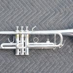 P13669