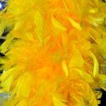 YellowPlume